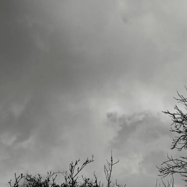 Infinite shades of grey and white